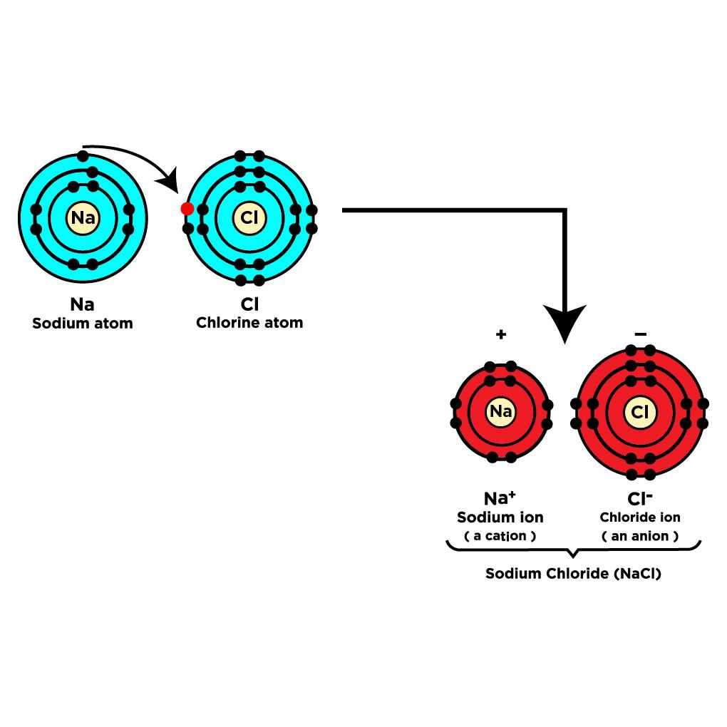 Polar Covalent Bond Examples